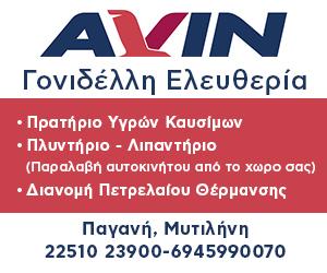 AvinOil-Gonidelli-300x250